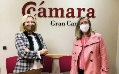 Participación en el Proyecto piloto de Mediación para la Resolución de Conflictos en el Ámbito Mercantil de la Cámara de Gran Canaria